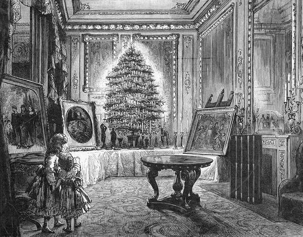 Christmas Tree Drawing -  Queen Victoria's Christmas  Tree by Mary Evans Picture Library