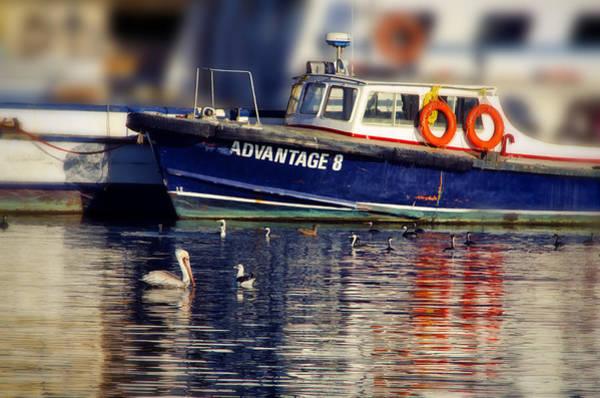 Ensenada Photograph -  Quiet Morning by Claude LeTien