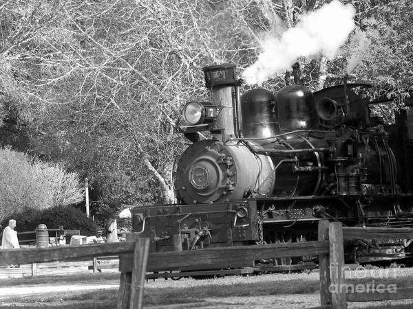 Felton Photograph -  Roaring Camp Railroad  by Chris Berry