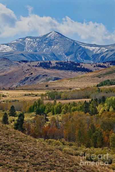Photograph -  Sierras Mountains by Mae Wertz