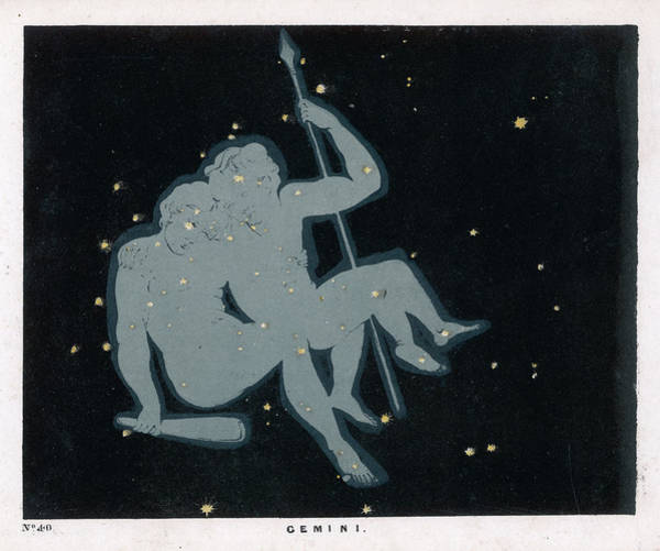 Wall Art - Drawing -  The Constellation Of Gemini,  The Twins by Mary Evans Picture Library