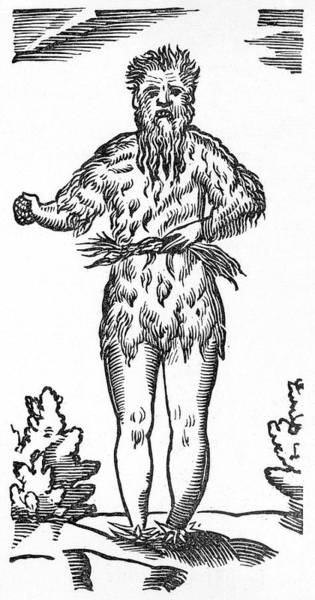 Folklore Drawing -  The Traditional Green Man  Of English by Mary Evans Picture Library