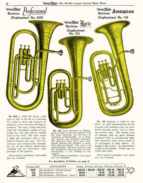 1924 Drawing -  Three Euphoniums (euphonia ?) by Mary Evans Picture Library
