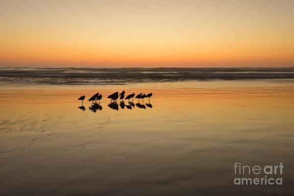 Photograph -  Twilight Tracks  by John F Tsumas