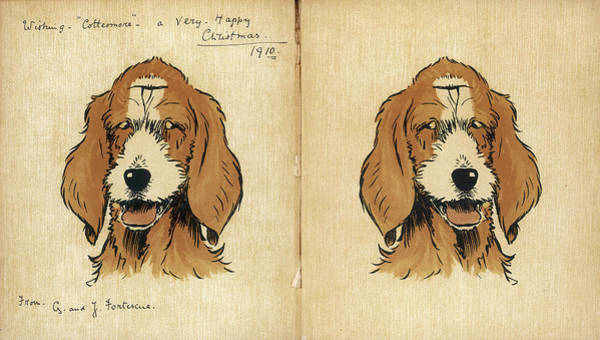 Pup Drawing -  Twin Puppies On The Inside Cover by Mary Evans Picture Library