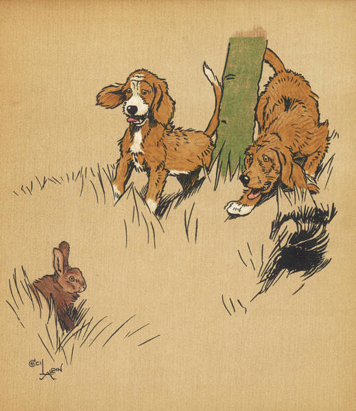 Pup Drawing -  Twin Puppies, Snip And Snap, Come by Mary Evans Picture Library
