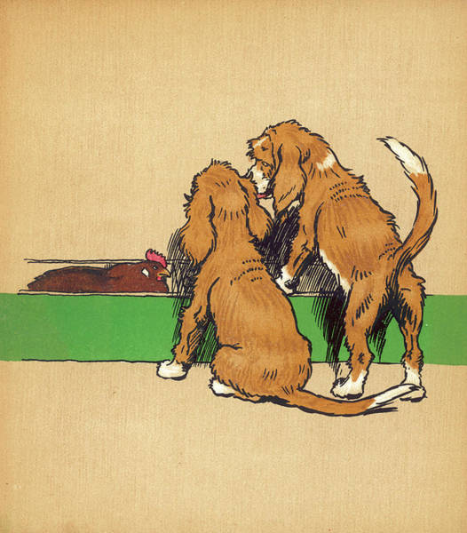 Pup Drawing -  Twin Puppies, Snip And Snap,  Consider by Mary Evans Picture Library