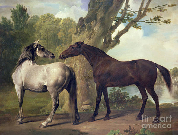 Loose Wall Art - Painting -  Two Horses In A Landscape by George Stubbs