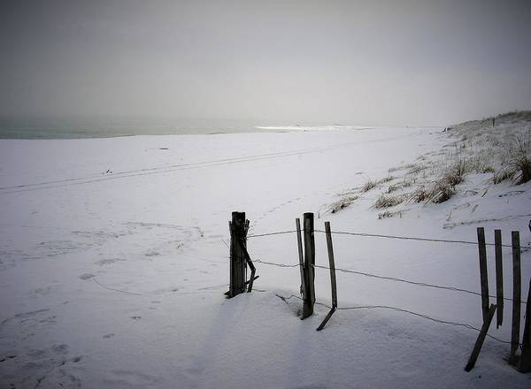 Winters Snow At Island Beach State Park Art Print by Vincent DeLucia