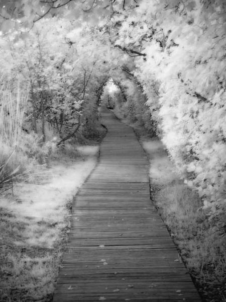 Photograph - 0763 Boardwalk To Eternity  by Chris Maher