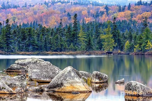 Baxter State Park Photograph - 0851 Baxter State Park - Maine by Steve Sturgill