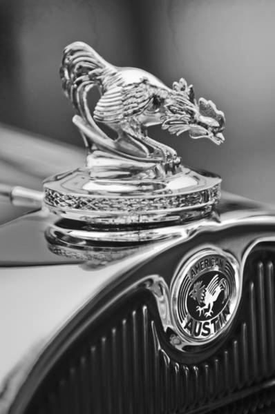 Photograph - 1931 American Austin Roadster Hood Ornament by Jill Reger