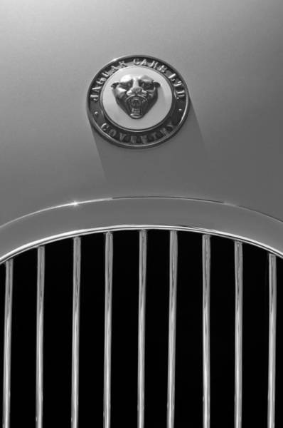 Photograph - 1952 Jaguar Xk120 Roadster Hood Emblem by Jill Reger