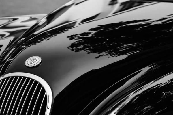 Photograph - 1954 Jaguar Xk 120 Roadster Hood Emblem by Jill Reger