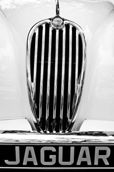 Photograph - 1955 Jaguar Grille Emblem by Jill Reger