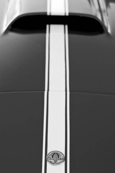 Photograph - 1966 Shelby Cobra Hood Emblem by Jill Reger