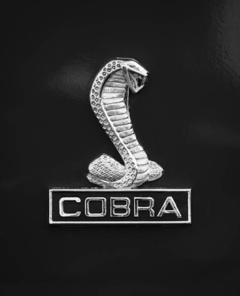 Photograph - 1968 Shelby Cobra Gt350 Emblem by Jill Reger
