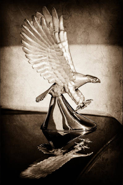 Photograph - 1986 Zimmer Golden Spirit Hood Ornament by Jill Reger