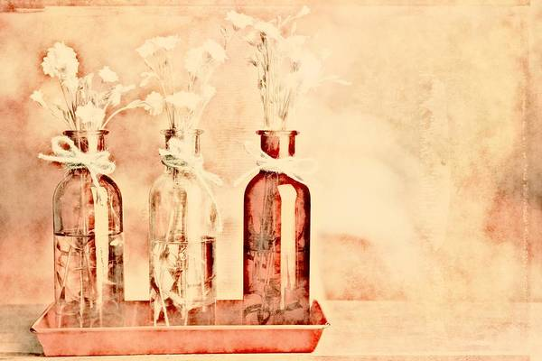 Peaches Photograph - 1-2-3 Bottles - R9t2b by Variance Collections