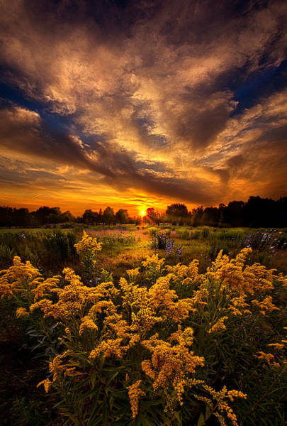 Photograph - A Peaceful Easy Feeling by Phil Koch