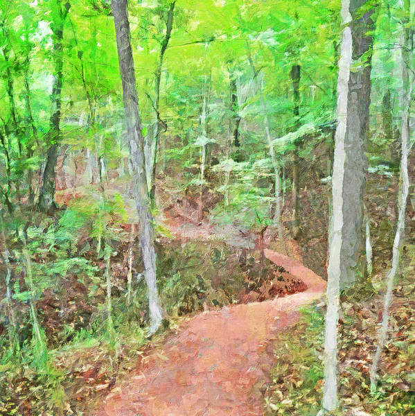 Digital Art - A Trail Through The Woods by Digital Photographic Arts