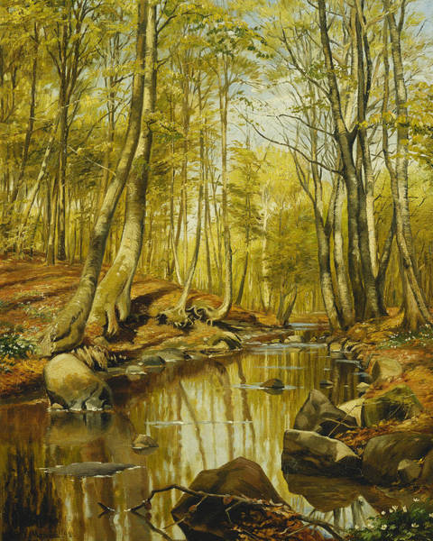 1890s Wall Art - Painting - A Wooded River Landscape by Peder Monsted
