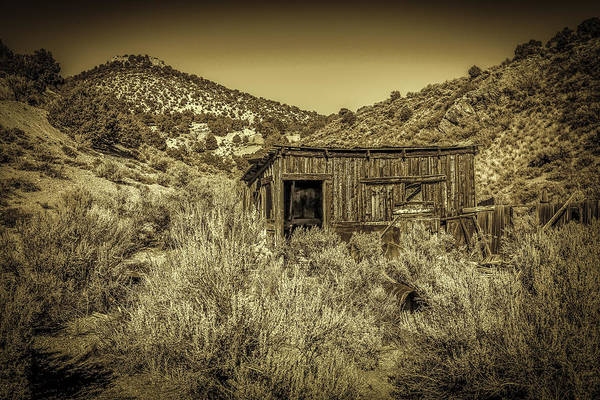 Photograph - Abandoned Shack by Susan Leonard