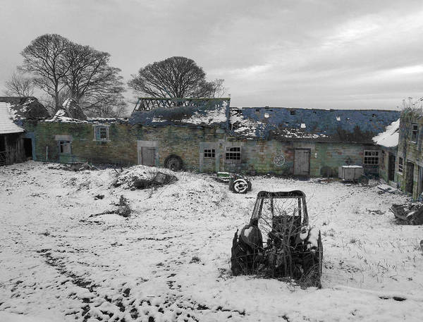 Photograph - Abandoned To Nature by David Birchall