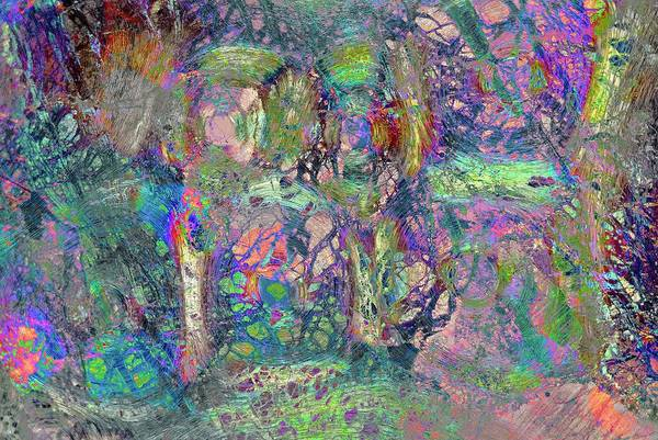 Abstract Polarised Light Micrographs Art Print by Steve Lowry