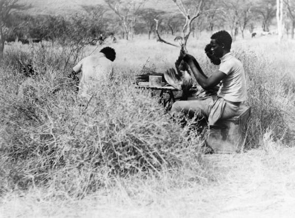 Wall Art - Photograph - Abyssinia Expedition, C1912 by Granger