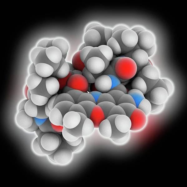 Pharmaceutics Wall Art - Photograph - Actinomycin D Drug Molecule by Laguna Design