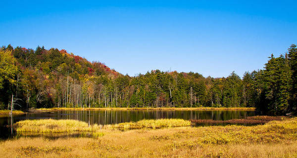Fulton Chain Of Lakes Photograph - Adirondack Color Vi by David Patterson