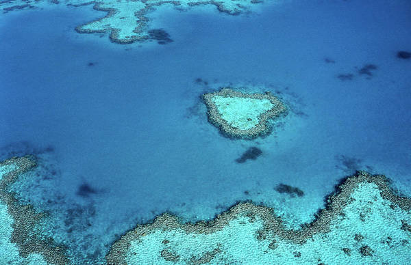 Reef Photograph - Aerial Of Heart-shaped Reef At Hardy by Holger Leue