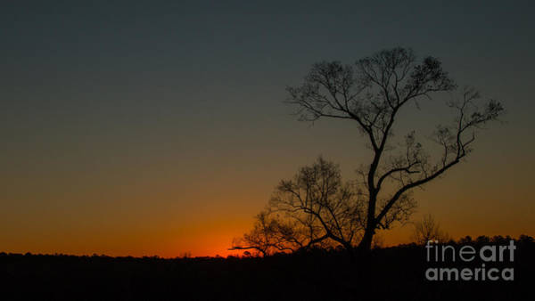Photograph - After Sunset by Dave Bosse