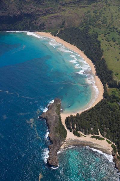 Photograph - Ah Kauai by Steven Lapkin