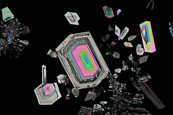 Biomedical Engineering Wall Art - Photograph - Alanine Amino Acid Crystals by Antonio Romero/science Photo Library