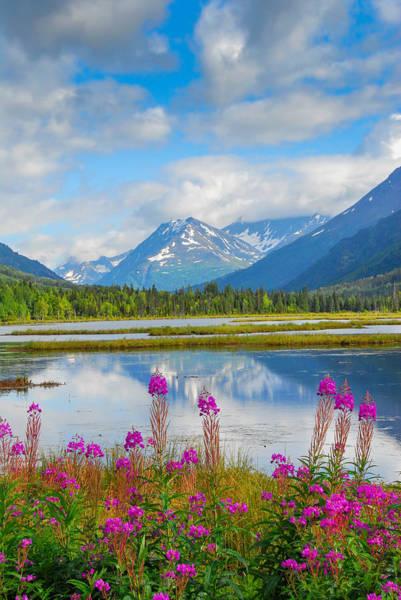 Photograph - Alaskan Horizons by Patrick Wolf