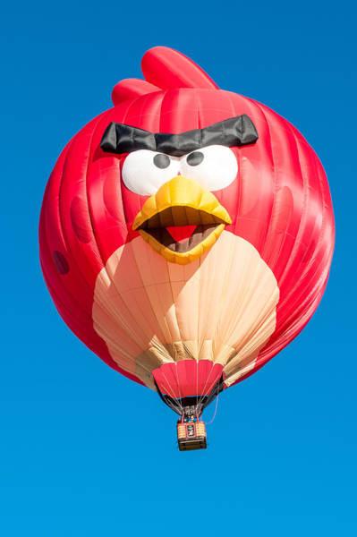 Photograph - Albuquerque Balloon Fiesta 11 by Lou  Novick