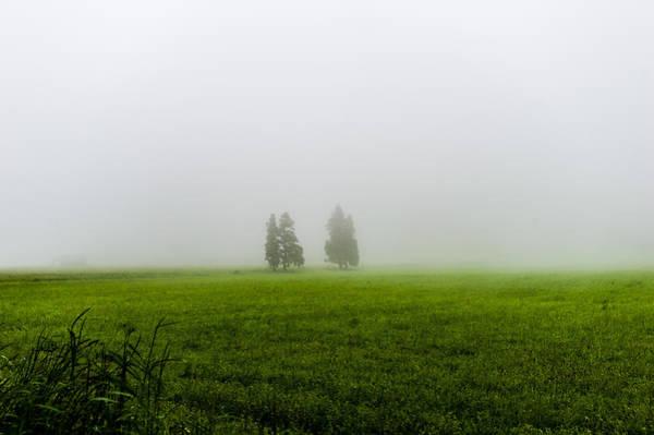 Photograph - Alone by Joseph Amaral