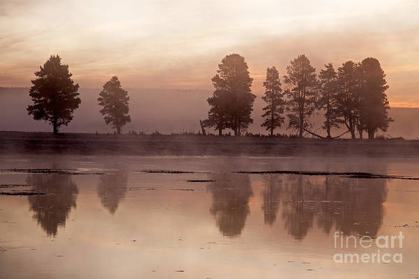 Photograph - Alum Creek On Yellowstone River In Yellowstone National Park by Fred Stearns