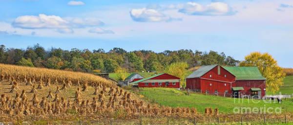 Wall Art - Photograph - Amish Farm by Jack Schultz