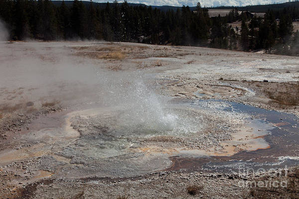 Photograph - Anemone Geyser In Upper Geyser Basin by Fred Stearns