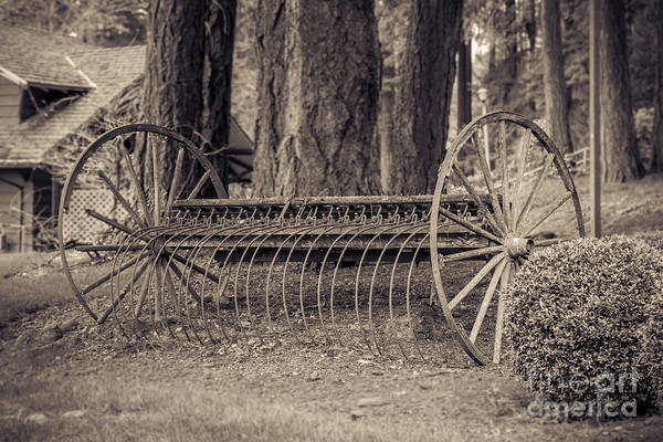 Hay Rake Photograph - Antique Hay Rake by Lucid Mood