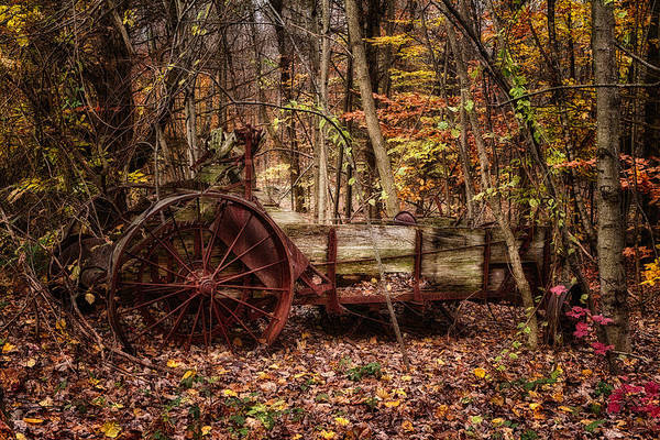 Photograph - Antique Manure Spreader In The Forest. by Jeff Sinon