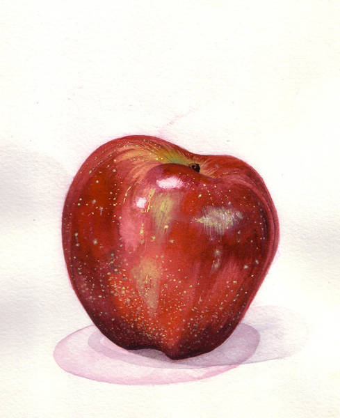 Painting - Apple by Alessandra Di Noto