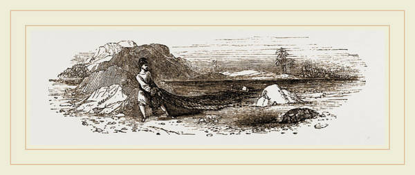 Wall Art - Drawing - Arab Fisherman by Litz Collection