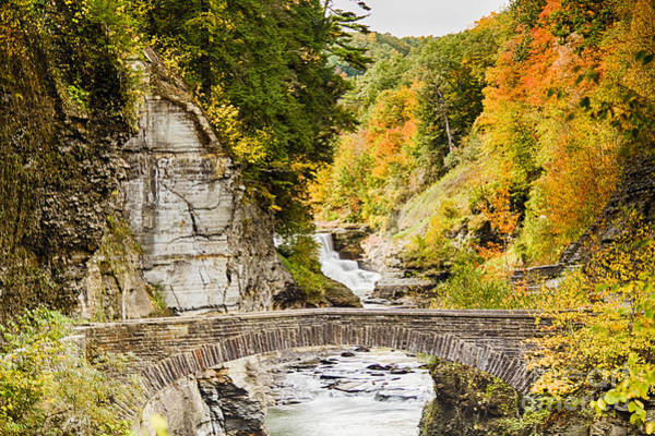 Photograph - Arched Bridge by Jim Lepard