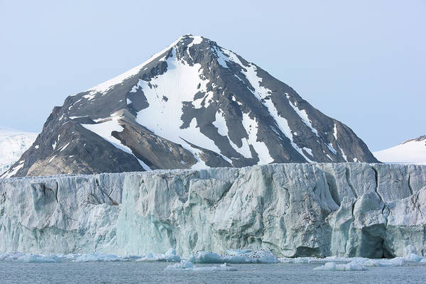 Ice Floes Wall Art - Photograph - Arctic Landscape by Dr P. Marazzi