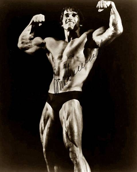 Photograph - Arnold Schwarzenegger 2 by Studio Release