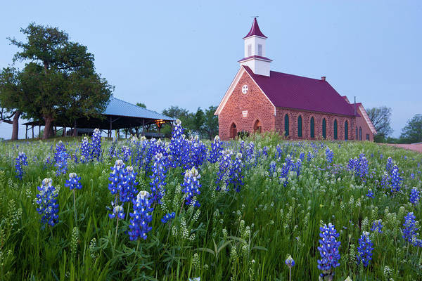 Methodist Church Wall Art - Photograph - Art Methodist Church And Bluebonnets by Larry Ditto